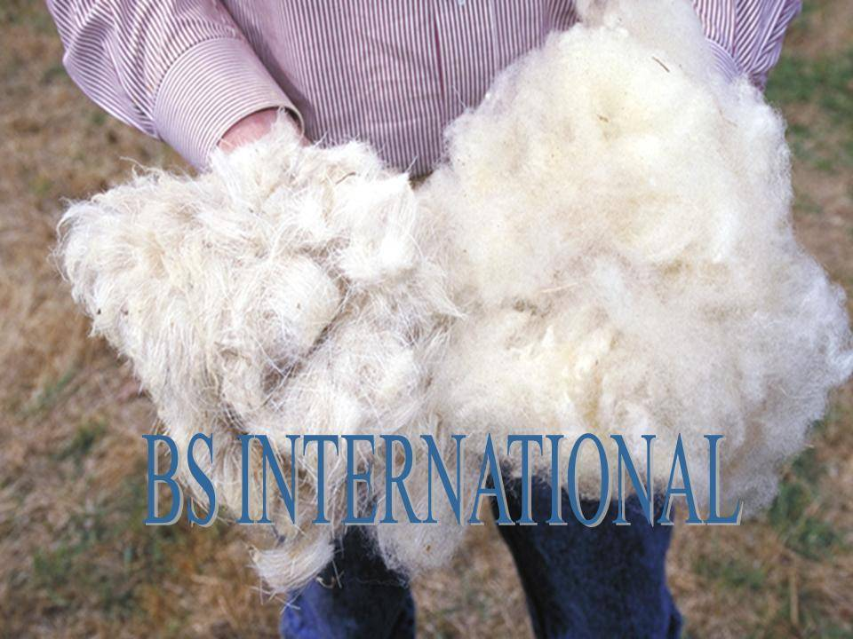 Sheep Hair Material of Fabric