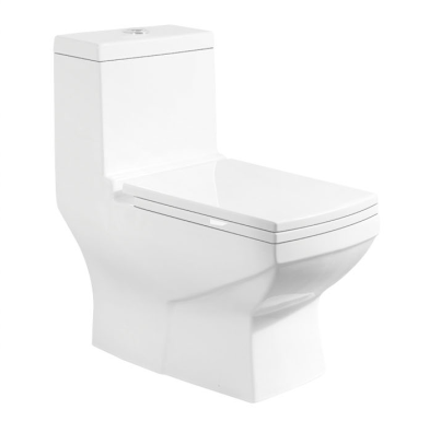 Washdown s-trap 250mm Roughing-in toilet square toilet bathroom toilet
