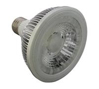 9W LED PAR30,LED COB BULB E27/E26,AC100-240V