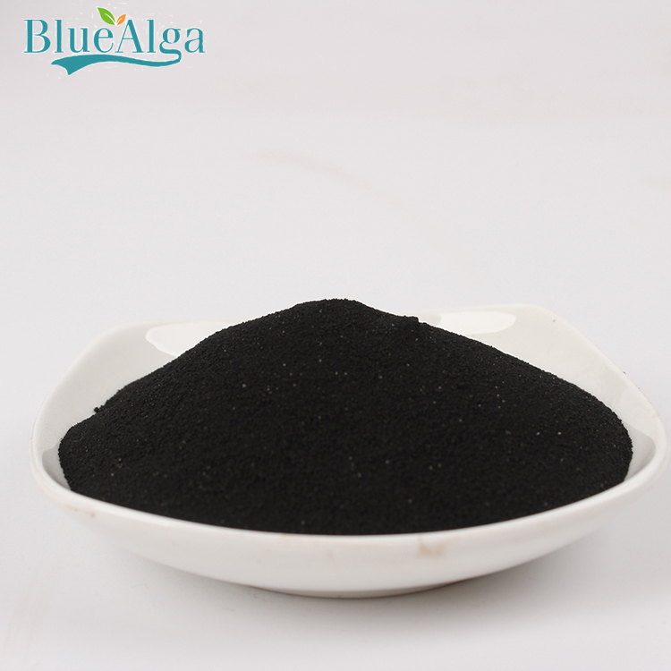 Factory outlet concentrated alga kelp source seaweed extract fertilizer
