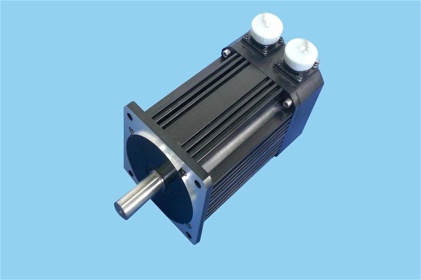 W Series Brushless Servo Motor