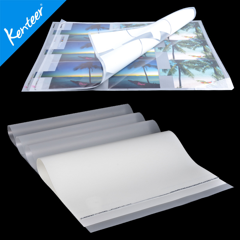 Glossy PET film for screen printing hot sale
