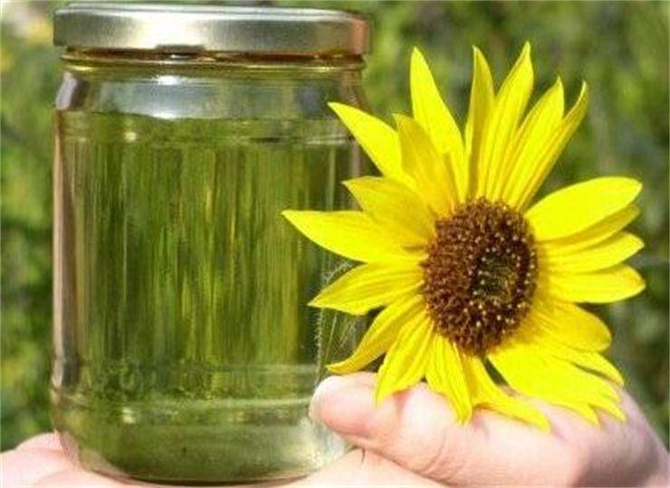 2016 Chinese Sunflower Cooking Oil