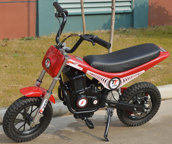 250W scooter YG250DH-2