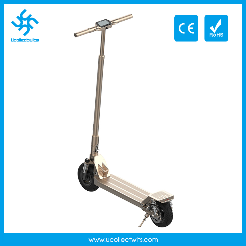 Pro Folding Mobillity Kick Scooter for Teenagers