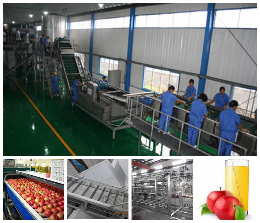 Apple Processing Line Machine, apple juice production line machine