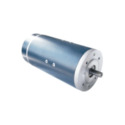 Permanent Magnetic DC Motor (118ZY)
