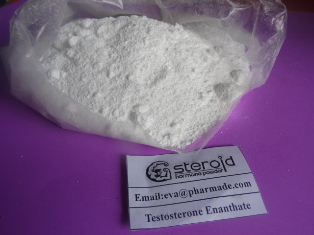 Testosterone enanthate Steroids Powder To Promote Male Genital Growth