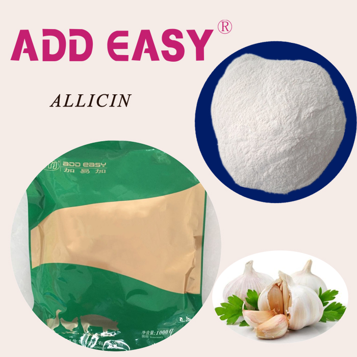 FEED HYGIENE High effective Allicin powder Garlic oil extraction