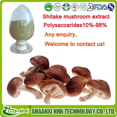 GMP China Supplier high quality natural and pure Shitake mushroom extract