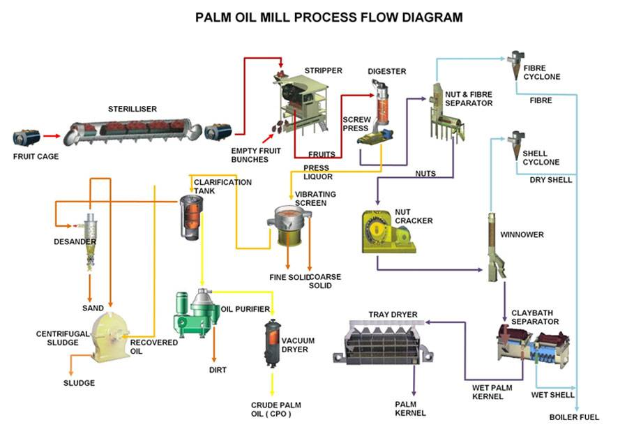 Palm oil production line - palm oil mill process
