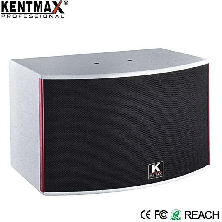 Modern Style 250 Watt Passive Professional Karaoke Speaker