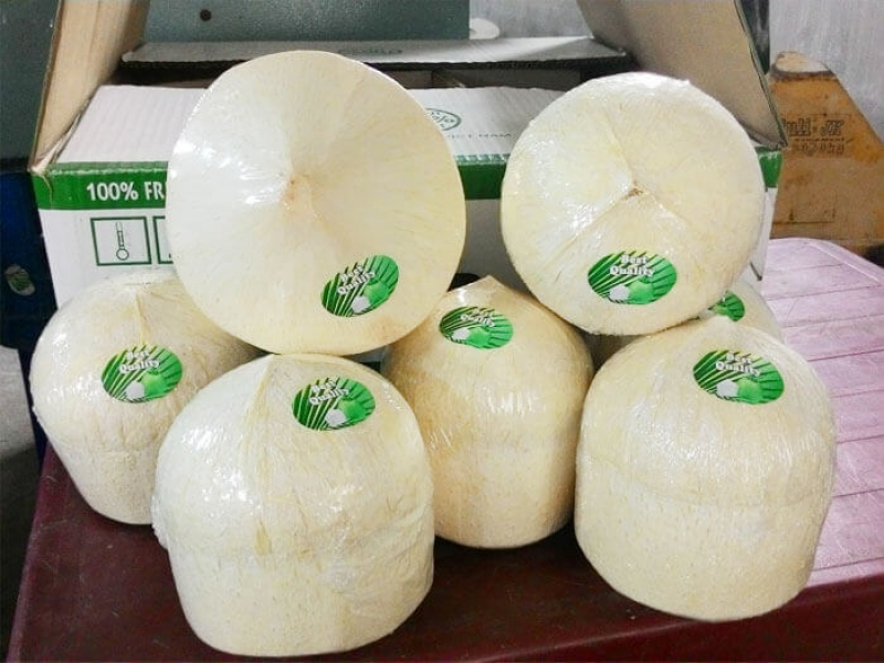 Fresh Coconut fruits