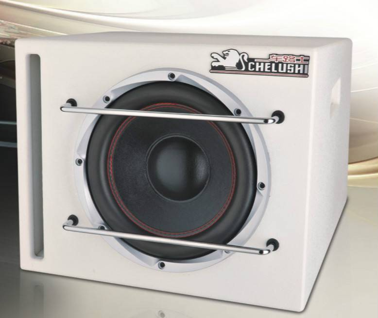 Sub-bass Speaker HLY-1010