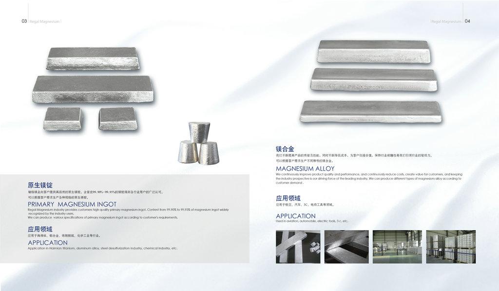 Magnesium alloy ingot/chips