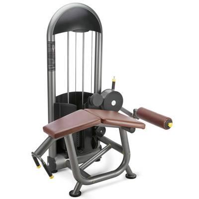 Prone Leg Curl gym equipment / fitness equipment