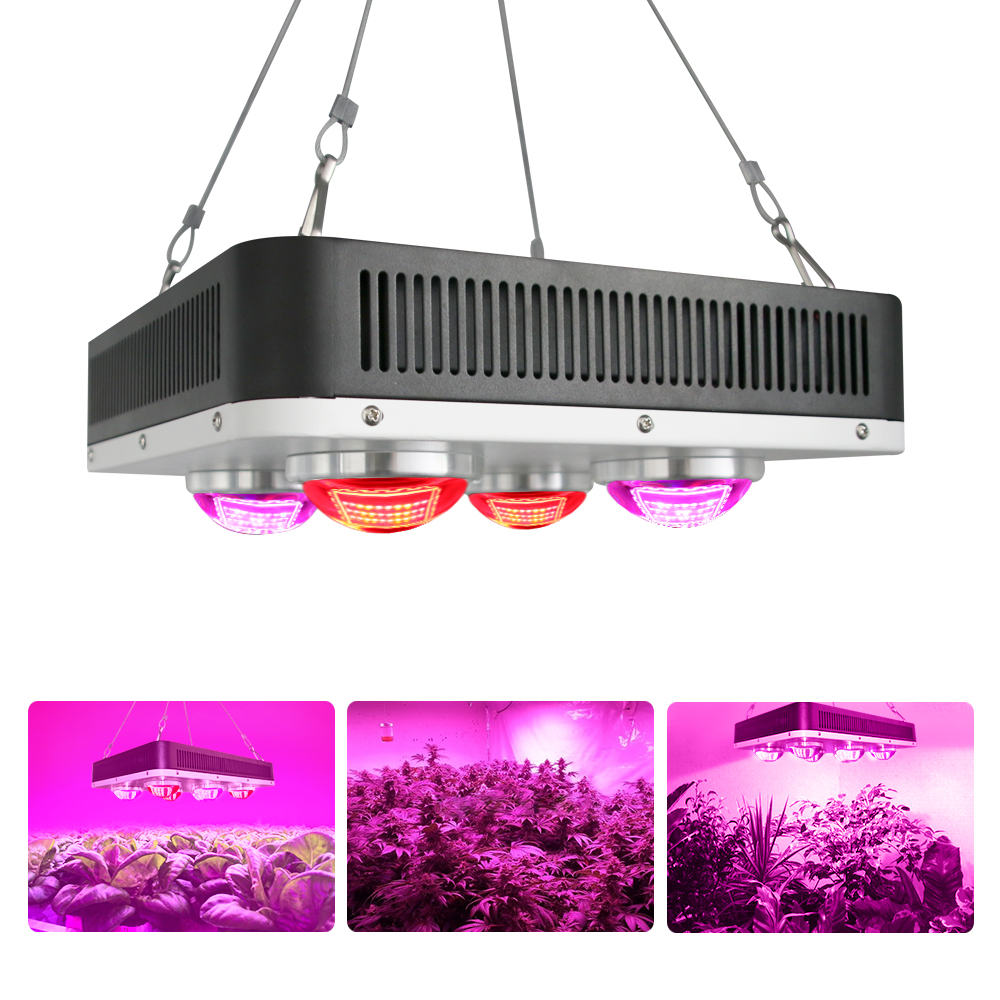 Hydroponic Lettuce Cultivation Led Grow Light 400w custom led grow light