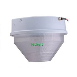 40W LED Parking Lot Canopy Light