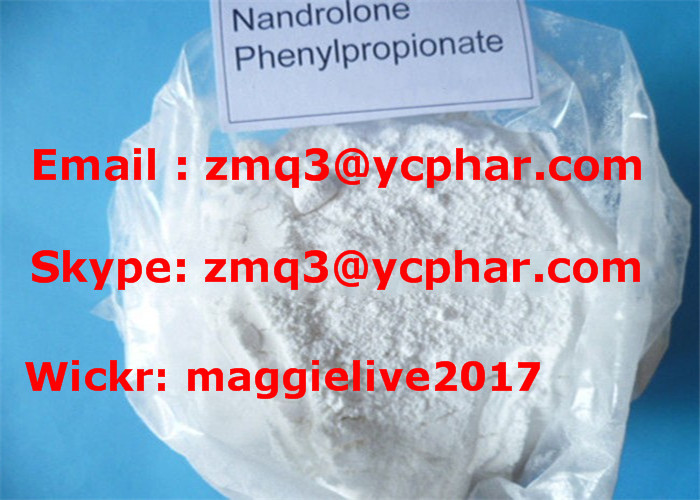 Nandrolone Phenypropionate Muscle Building Steroids Hormones CAS 62-90-8