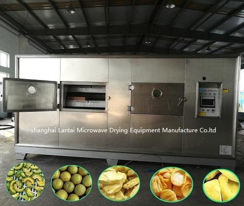 LANTAI Microwave fruit and vegetable vacuum dryer machine
