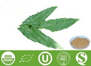 Epimedium Extract - Icariin 10%-98%