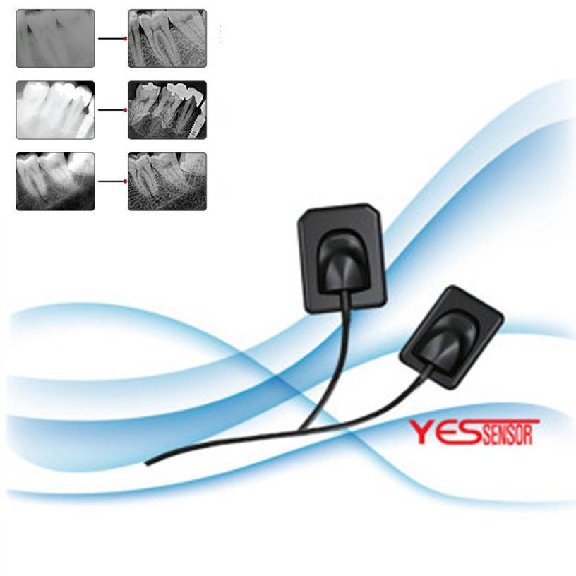 Yes Brand Medical Dental Digital Intraoral Sensor Made in Korea
