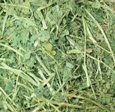 Best Alfalfa Hay