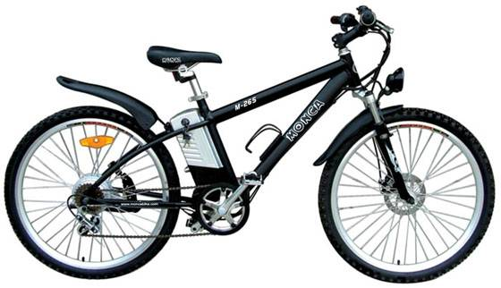 Mountain Electric Bicycle M265