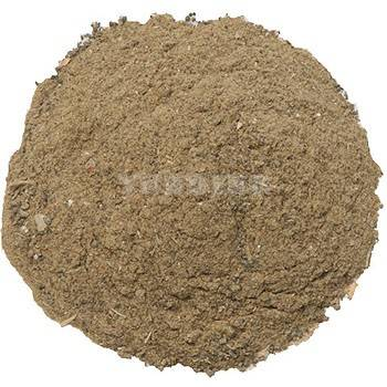 fish meal feed