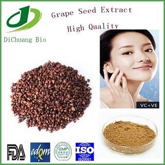 Grape Seed Extract CAS No 84929-27-1