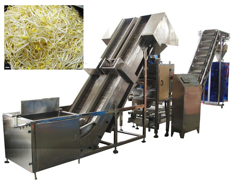 Automatic Bean Sprout Packaging Machine (VFS5000T)
