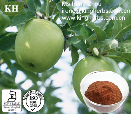 Apple Extract;Polyphenols 50%, 70%, 75%, 80%;