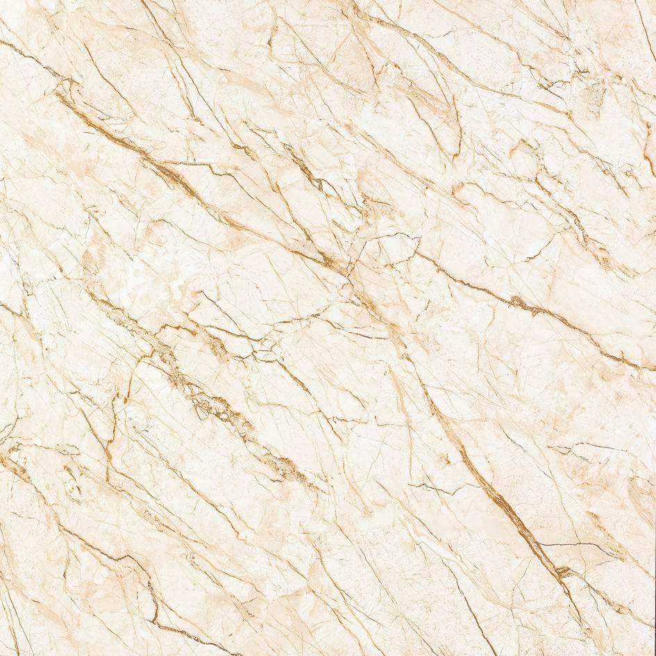 800*800 mm Polishing Glaze Porcelain Tile     Floor/Wall     item No. 2-GZ8024