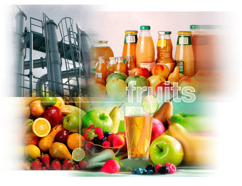 Fruit processing Plant, fruit plant, fruit juice processing machine, apple/pear/peach/grapes/banana/