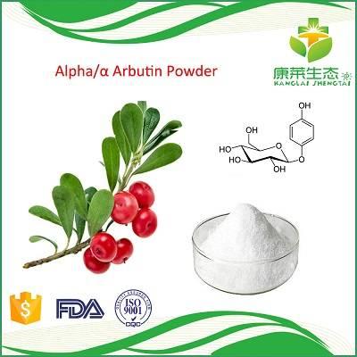 Bearberry Fruit Extract Alpha and Beta Arbutin Powder 99% High Purity