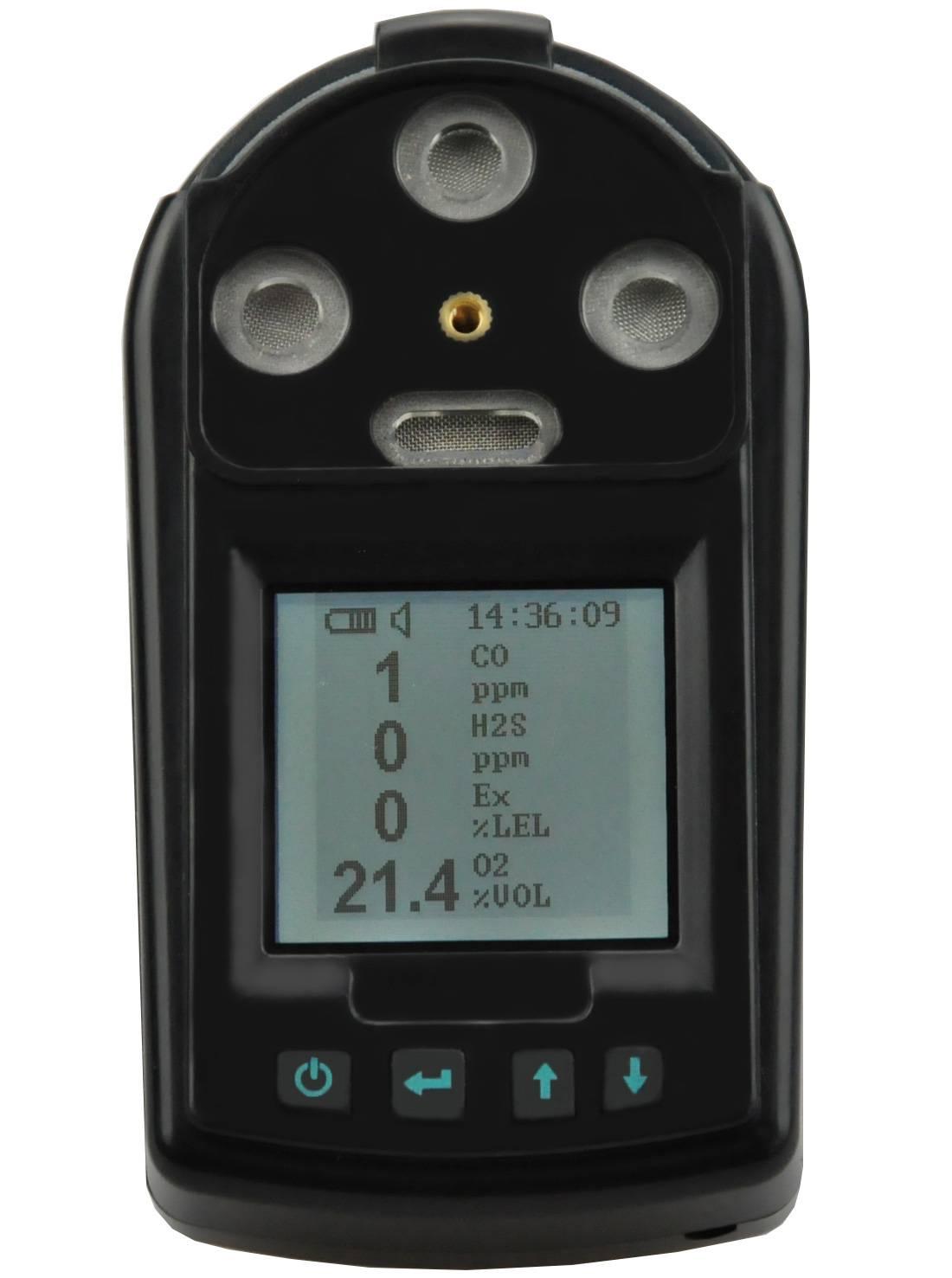 Portable gas detector   RH-1600