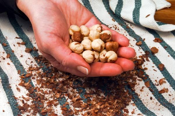 Hazelnut for sale