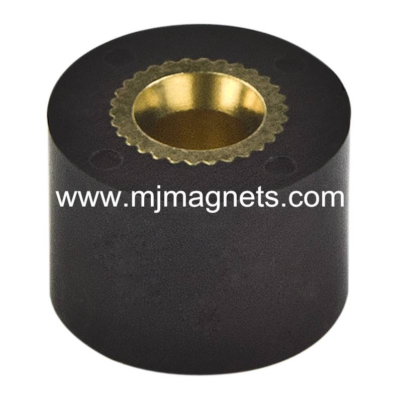 plastic injection molded magnet for motor