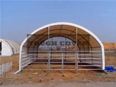 Cattle Barns, 6.0m(20ft) wide, Livestock Housing