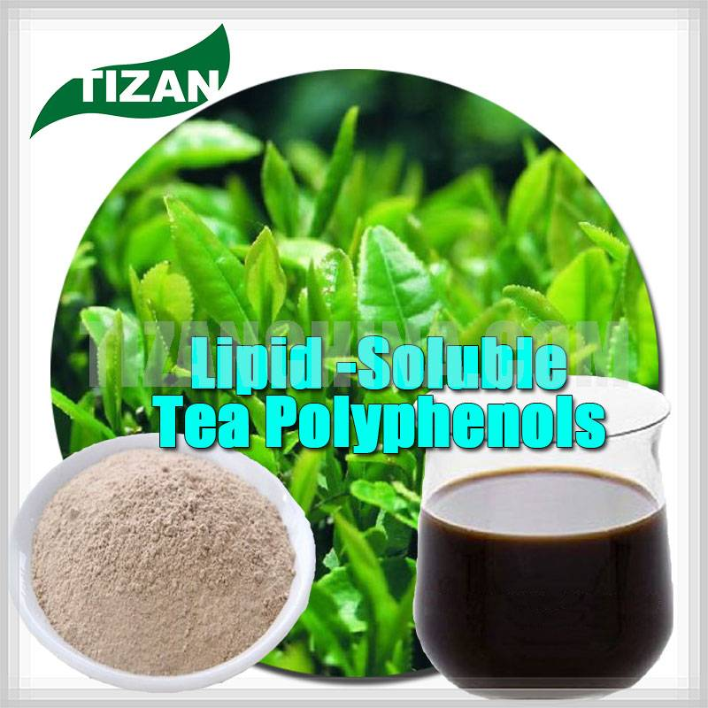 Lipid-Soluble Tea Polyphenols