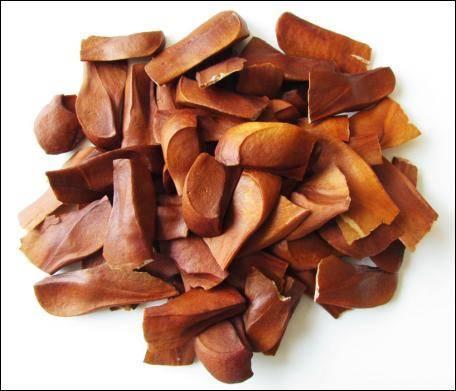 Mahogany - Teak seeds, Black wood, Siamese Rosewood, Rosewood - Agarharvest