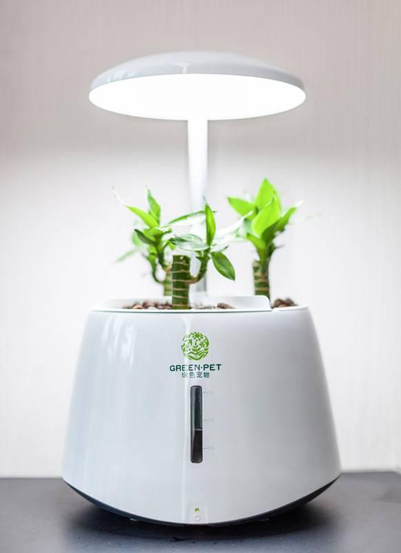 aeroponics grow tent