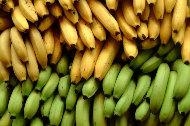 Fresh bananas