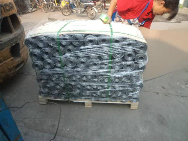 Electro galvanized hexagonal wire mesh with 1/2 inch hole
