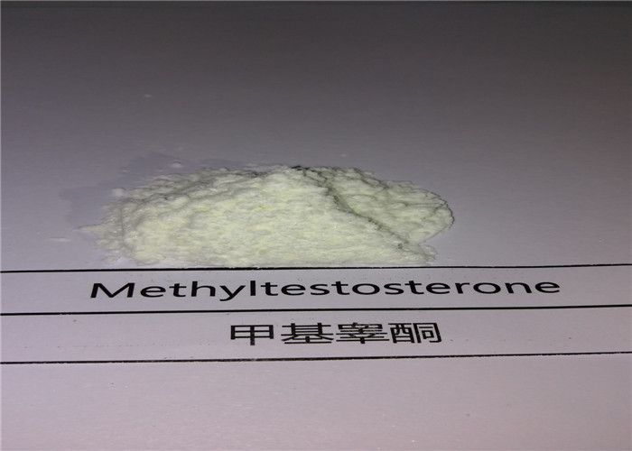 CAS 58-18-4 Methyltestosterone Powder Steroids Increase Testosterone For For Muscle Building
