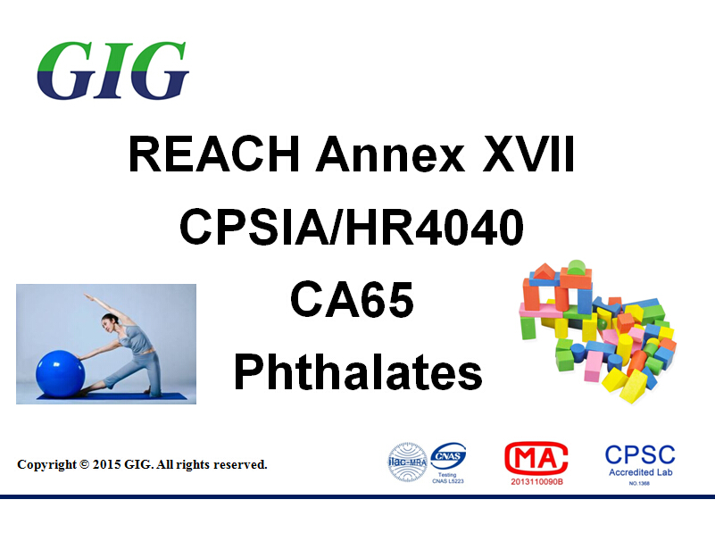 Phthalates test service in china