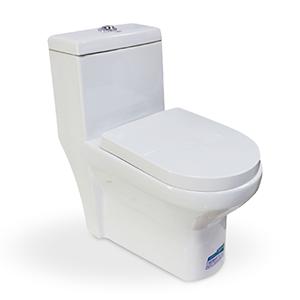 Customized Toilet