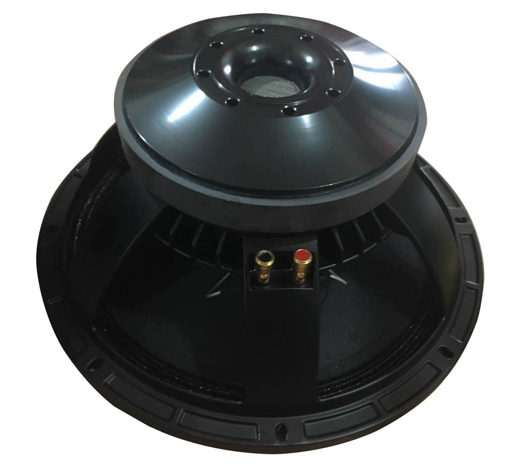 LW1504B-Pro Bocinas 15 Inch 550W Speaker