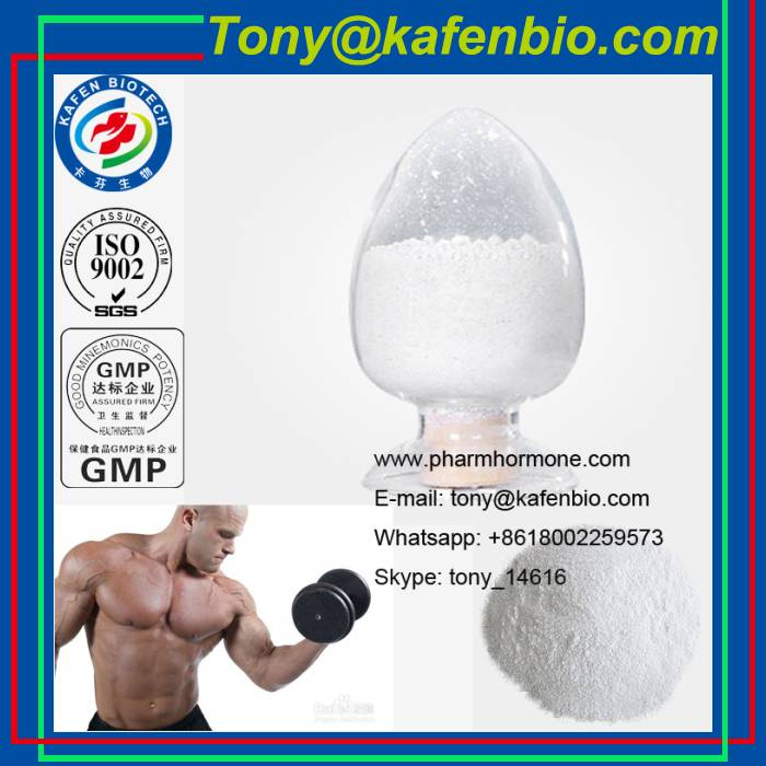Bodybuilding Supplements Anabolic Steroids Powder Mestanolone For Muscle Growth