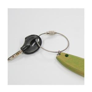 Key ring- Green fishr